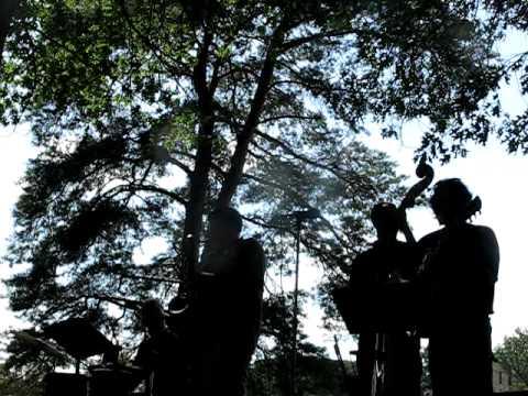 Al Asmus with the Philipsek&Asmus Quartet at Munsinger Garden, St. Cloud MN
