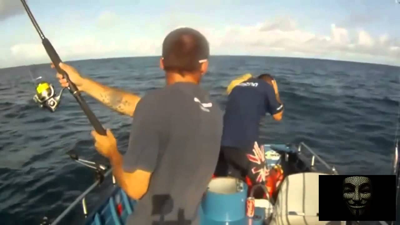 лучший сайт с видео о рыбалке
