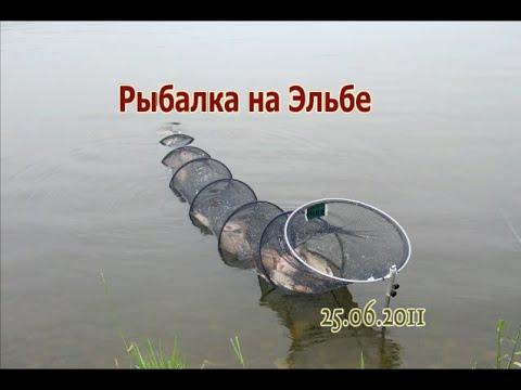 рыбалка на эльге видео
