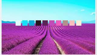 Những ý tưởng về màu sắc thiết kế trong thiên nhiên