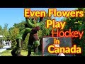 Full Time RV Living | Flowers & Parliament in Canada's Capital | S2 EP122