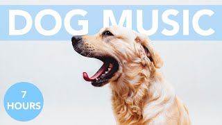 4th of July FIREWORK Music for Dogs! Soothe Your Dog and Calm Their Fear!