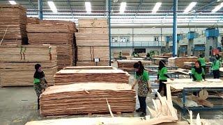 Proses Pembuatan Blockboard di Pabrik Kayu PT Nagabhuana Wonogiri