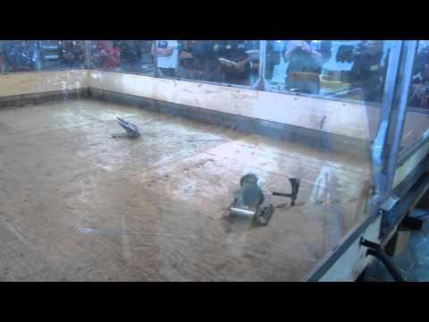 MMMV.18.Raptor.Turnier.Runde.1.Kampf.3.Lightjockey.vs.Perun.vs.ED607