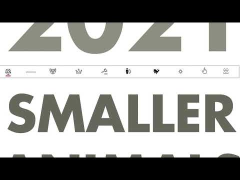 """""""2021"""", Smaller Animals"""