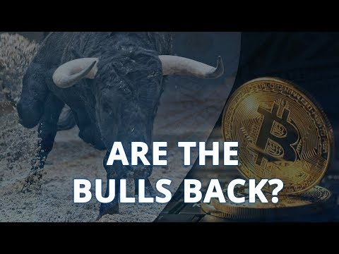 Is the Bitcoin Bear Market Over? How to Know The Next Move.