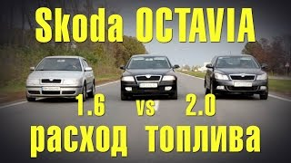 Skoda Octavia A5 1.6 vs 2.0 расход топлива, тест-драйв