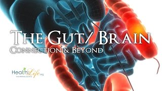 """""""Your Microbiome II"""" Gut/ Brain Series (Part 3 of 4)"""