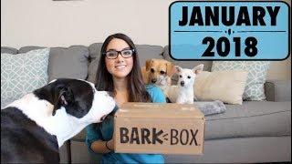Barkbox January 2018 Unboxing - Extra Toy Club