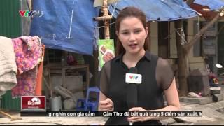 NKVTPB 12/04/2016 | Giật Mình Tim Lợn Nhập Khẩu Từ Năm 1982 | VTV24
