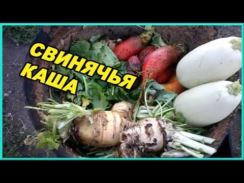 Приготовление  каши для свиней Зауральское подворье Жизнь в россии