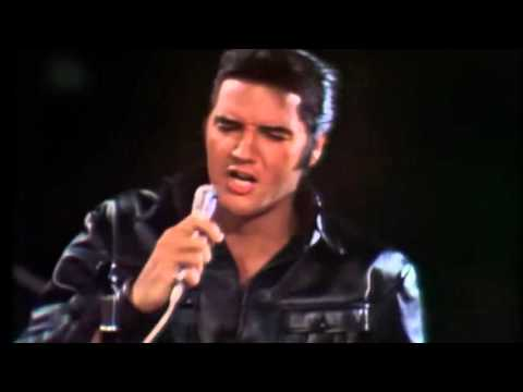 elvis presley Heartbreak Hotel - Hound Dog - All Shook Up