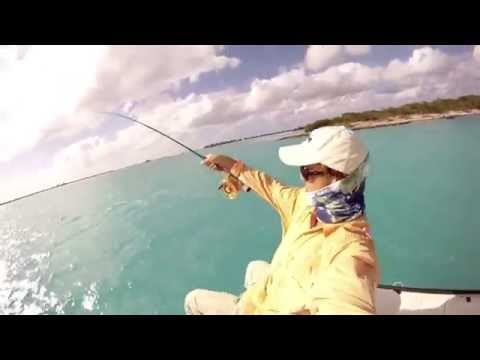 Turks and Caicos Sharks on the Fly