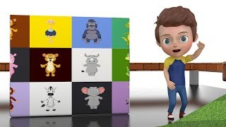 Learn Colors With Pit Balls Surprise Animals - Videos For Kids