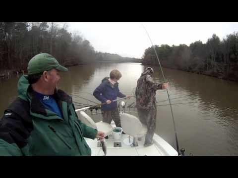 Crappie fishing on lake oconee youtube for Lake sinclair fishing