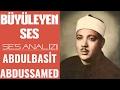 Fascinate Voice Abdulbasit Abdussamed Voice Analysis