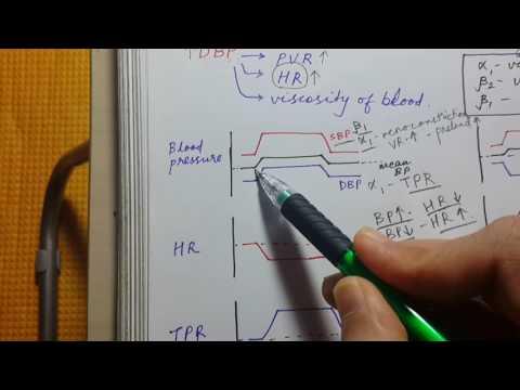 PHARMACOLOGY GRAPHS FOR USMLE STEP 1 | SBP DBP HR TPR thumbnail