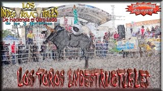 LOS TOROS INDESTRUCTIBLES DE H3H EN LA ESTANZUELA (TEUCHITLÁN, JALISCO)