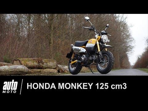 Honda Monkey 125 Cm3 ESSAI POV AUTO-MOTO.COM