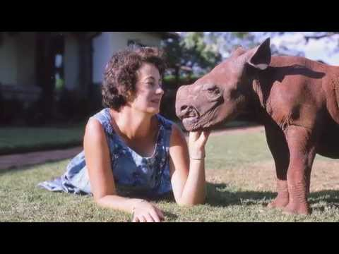Kristin Davis shares a message on Dame Daphne Sheldrick's 80th Birthday