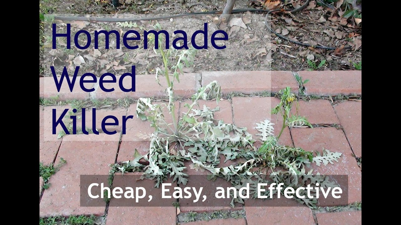 How Safe Is Your Weed Killer How Safe Is Your Weed Killer new pics