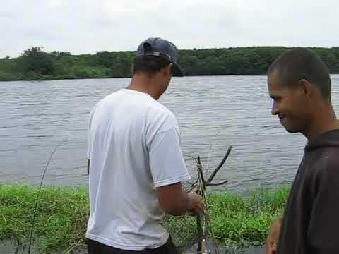 pesca de piapara em Bariri