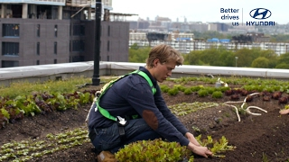 How One Rooftop Farm Could Make Your City Better // Presented By BuzzFeed & Hyundai