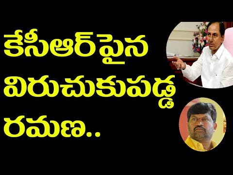 TDP Leader Ramana Warning For KCR Ll Pulihora News