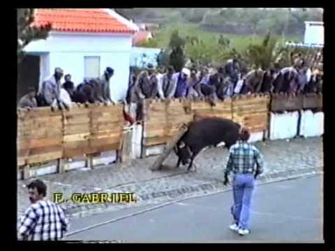 مهرجان الثيران في البرتغال