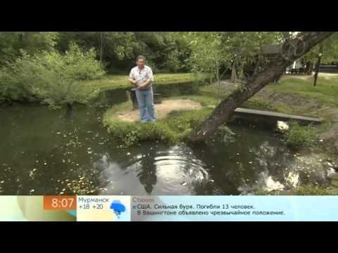 закон о любительской рыбалке норма вылова