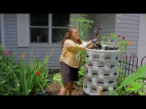 Kristi on Summer Vegetable Planting with your Garden Tower
