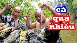 🥣Không Ngờ Ở Cái Vũng Nước Này Lại Nhiều Cá Đến Vậy - Cá Nhúng Tả Bí Lù Siêu Ngon | Sơn Dược Vlogs