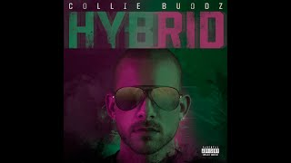 Collie Buddz - Hybrid [Full Album]