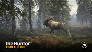 Petite chasse au canard sur The hunter call of the wild