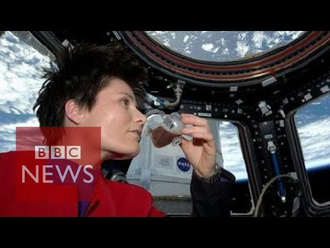 What's it like to spend months in space? - BBC News