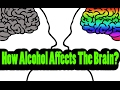 How Alcohol Affects The Brain mp3