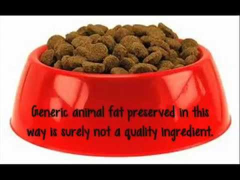 Pedigree Dog Food:  A Closer Look