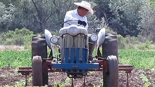 ANTIQUE FARM TRACTOR in ACTION WORKING