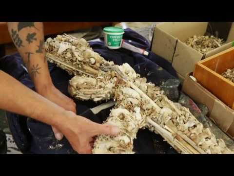 The Bone Collector -The Bone Art of Bruce Mahalski