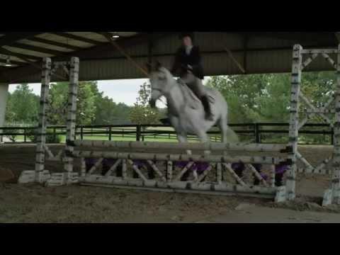Watch A Gift Horse (2015) Online Free Putlocker