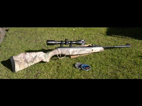 Stoeger .22 cal X20 air rifle