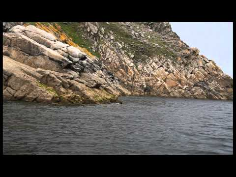 Lundy Island Marine Conservation