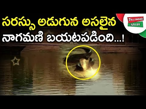 Unknown And Interesting Facts About Kusum Sarovar Story | Mysterious Story Behind Kusum Sarovar