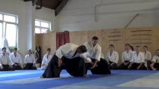 Michel Erb Best Of Destinations Aikido 2013 [Cosmic Love]
