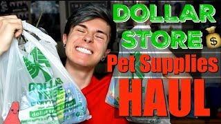 DOLLAR STORE PET SUPPLIES HAUL!!!