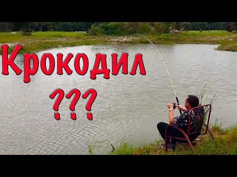 видео на рыбалке большие уловы