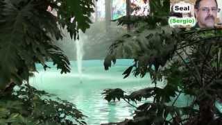 COSMOVITRAL Jardín botánico) TOLUCA  FORMATO  (HD)