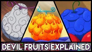 Explaining Devil Fruits - Everything You Need To Know | One Piece Explained