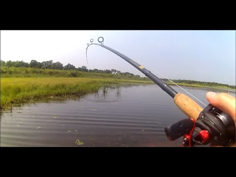 Убойная рыбалка на змееголова