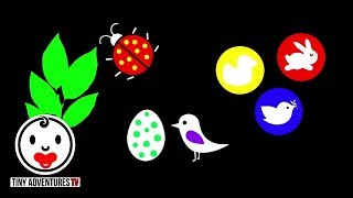 Baby Sensory - High Contrast Colour Animation (Infant Visual Stimulation) #2
